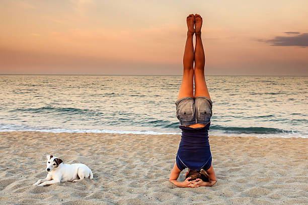yoga headstand on the beach with his dog - lustiges yoga stock-fotos und bilder