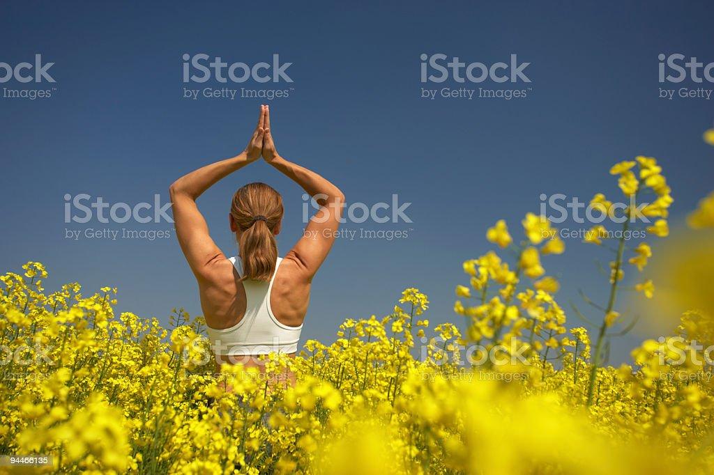 yoga in rape field stock photo