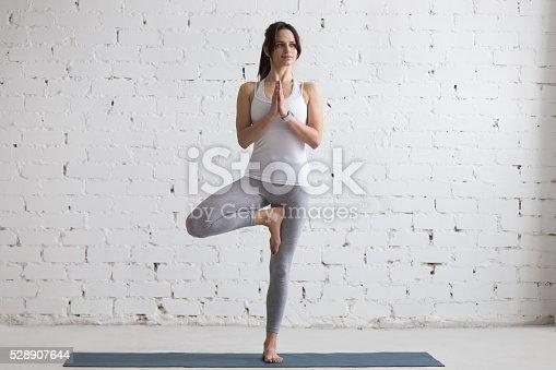 istock Yoga Indoors: Tree Pose 528907644