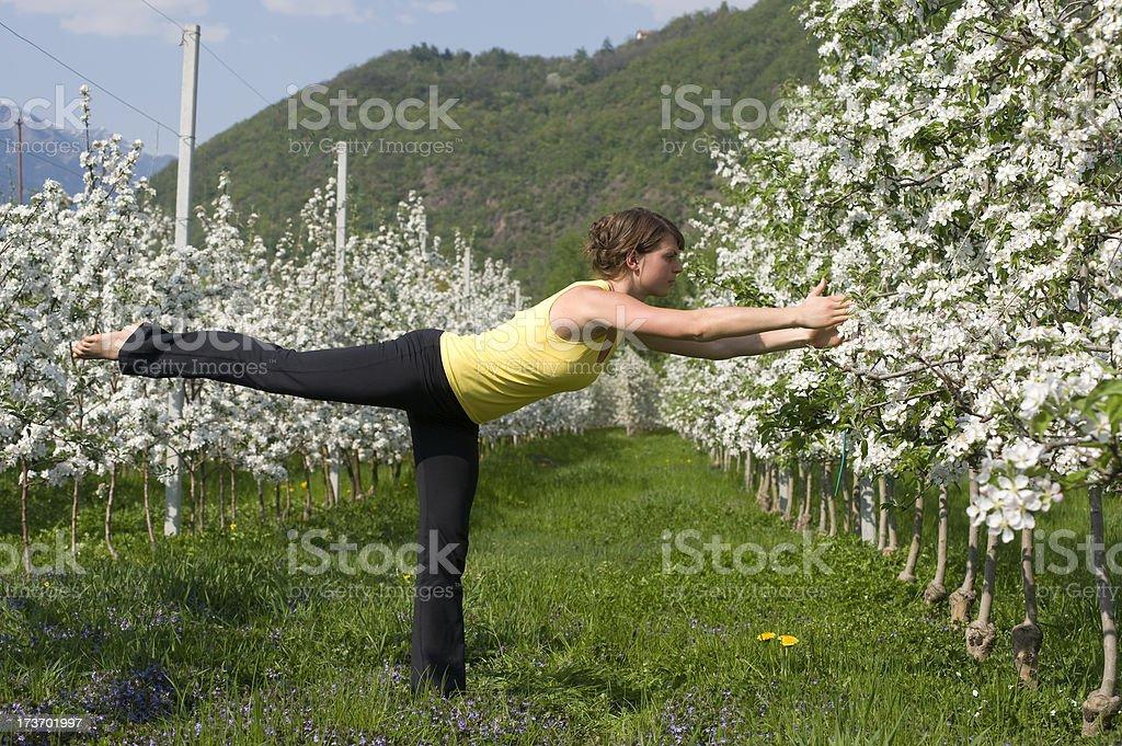 yoga natural royalty-free stock photo