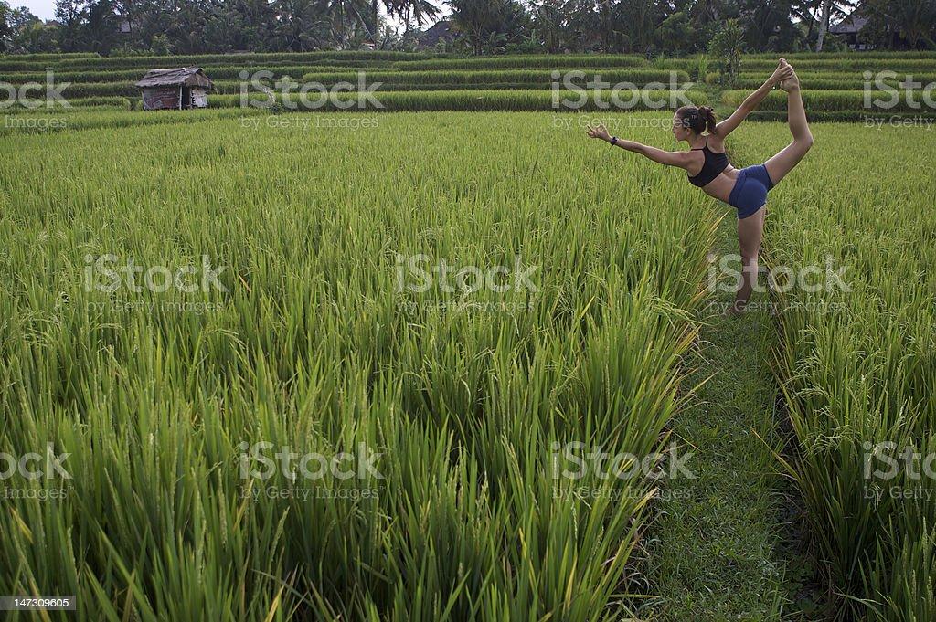 Yogi woman in rice field royalty-free stock photo