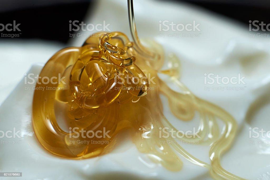 Yaourt et miel photo libre de droits