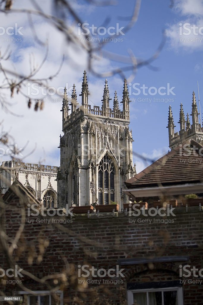 York Minster framed by branches royalty-free stock photo
