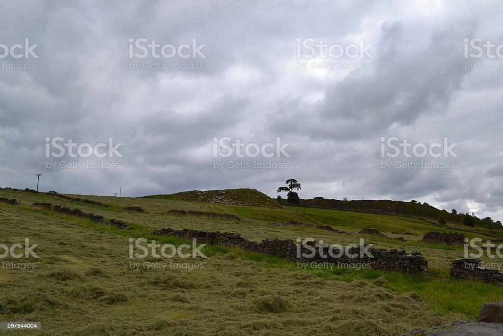 Yorkshire Moors stock photo