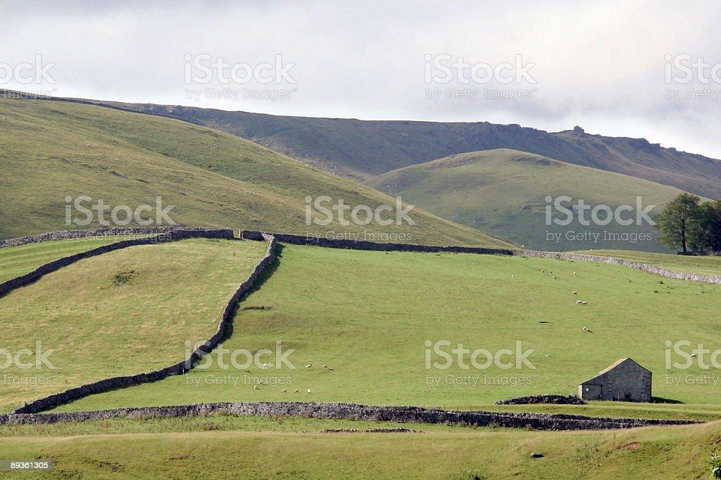 Yorkshire zbiór zdjęć royalty-free