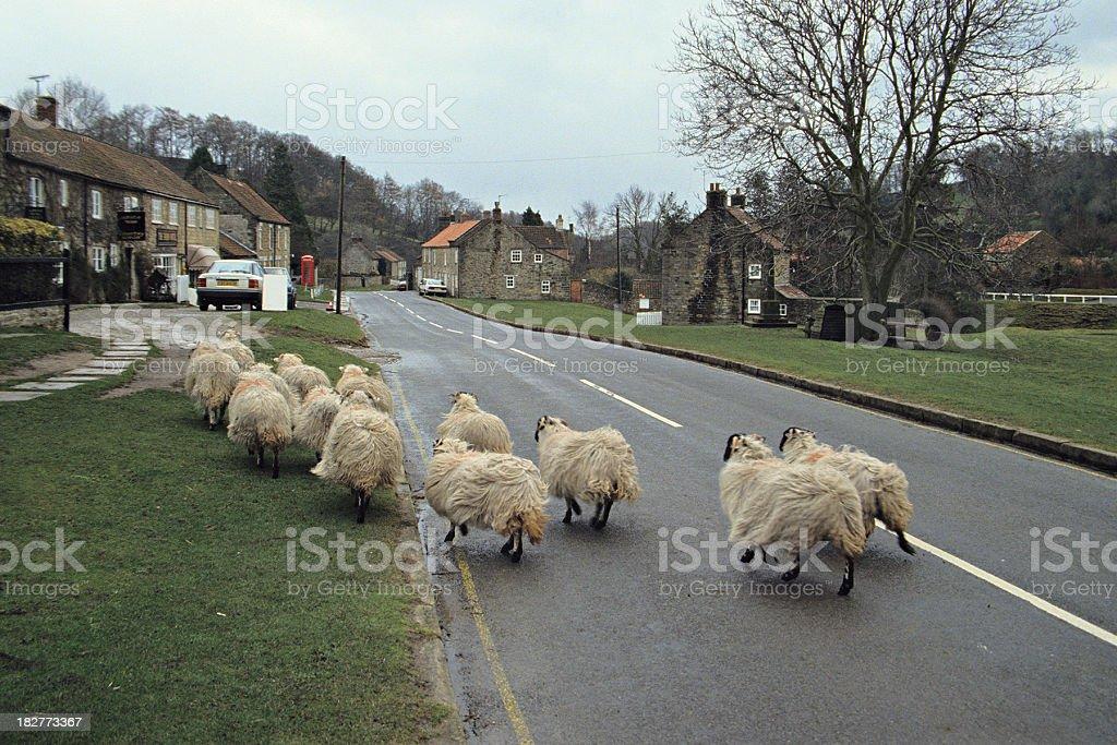 Yorkshire Village Scene royalty-free stock photo