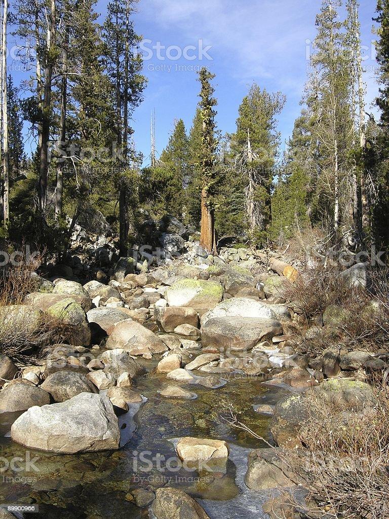 Yosemite Creek - Yosemite National Park, California, USA royalty-free stock photo