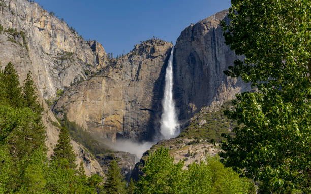 Yosemite Falls at Yosemite National Park Spring Runoff Tree Framed stock photo