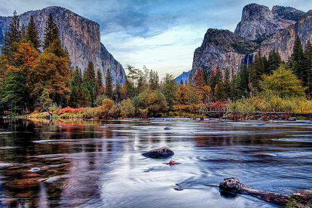 yosemite merced river el capitan panorama - river stock photos and pictures