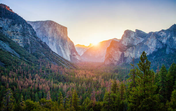 Yosemite National Park at sunrise, California, USA Classic Tunnel View of scenic Yosemite Valley with famous El Capitan and Half Dome rock climbing summits in beautiful golden morning light at sunrise in summer, Yosemite National Park, California, USA el capitan yosemite national park stock pictures, royalty-free photos & images