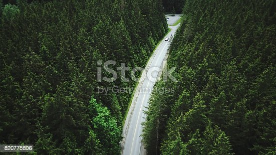 820775768 istock photo yosemite national park forest aerial view from helicopter 820775806