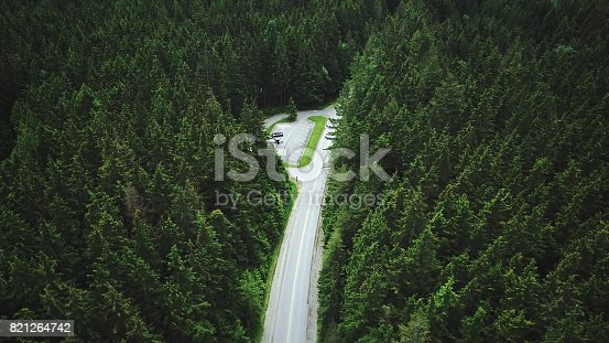 820775768 istock photo yosemite national park forest aerial view from helicopter 821264742