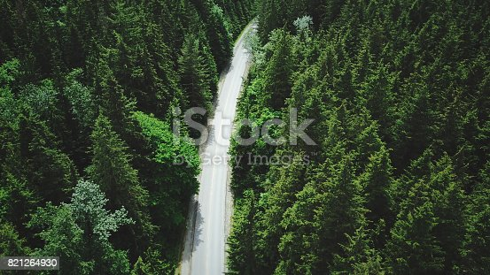 820775768 istock photo yosemite national park forest aerial view from helicopter 821264930