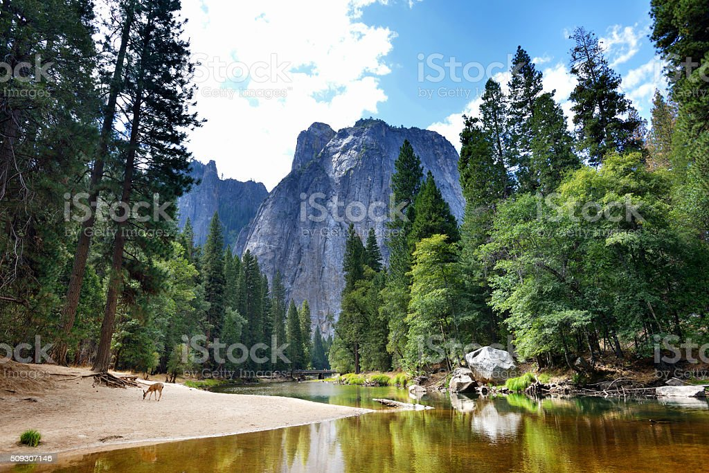 Yosemite National Park bildbanksfoto