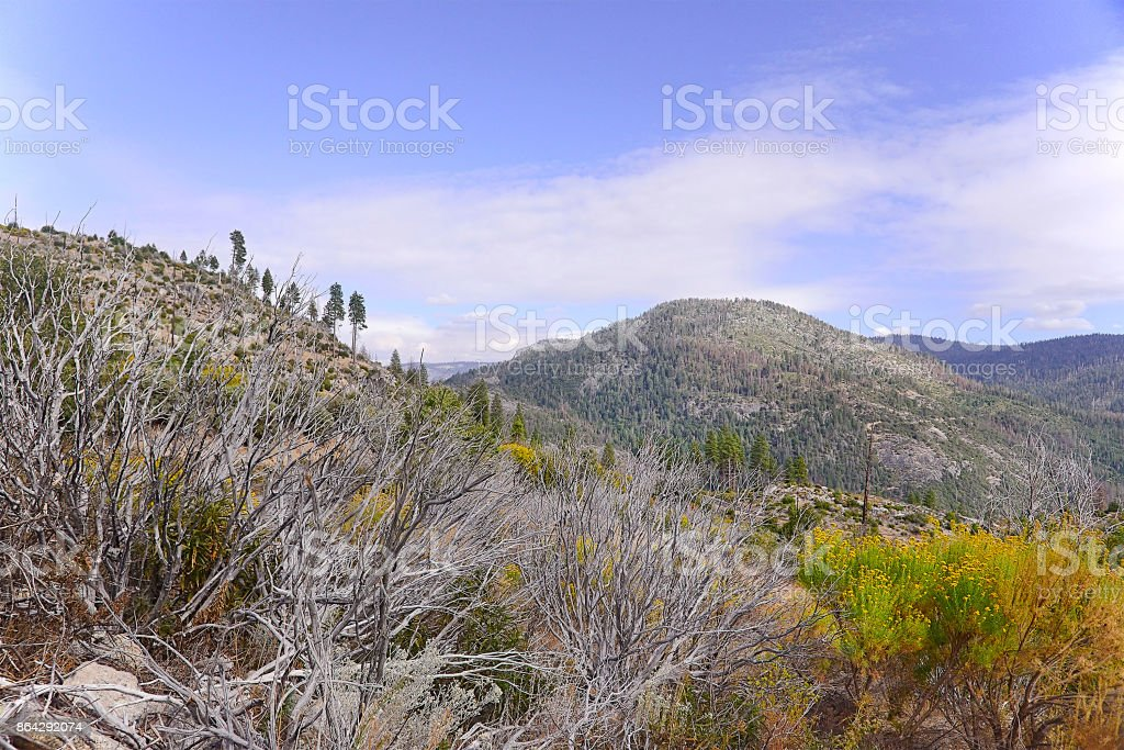 Yosemite national park valley in California royalty-free stock photo