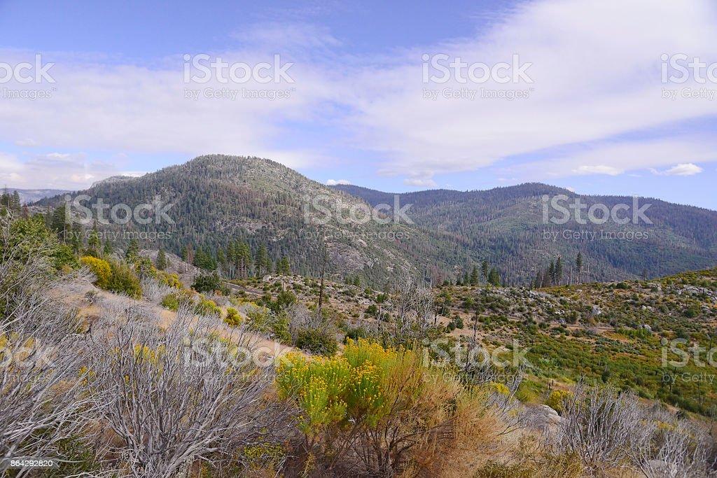 Yosemite national park valley in California royalty-free stock photo