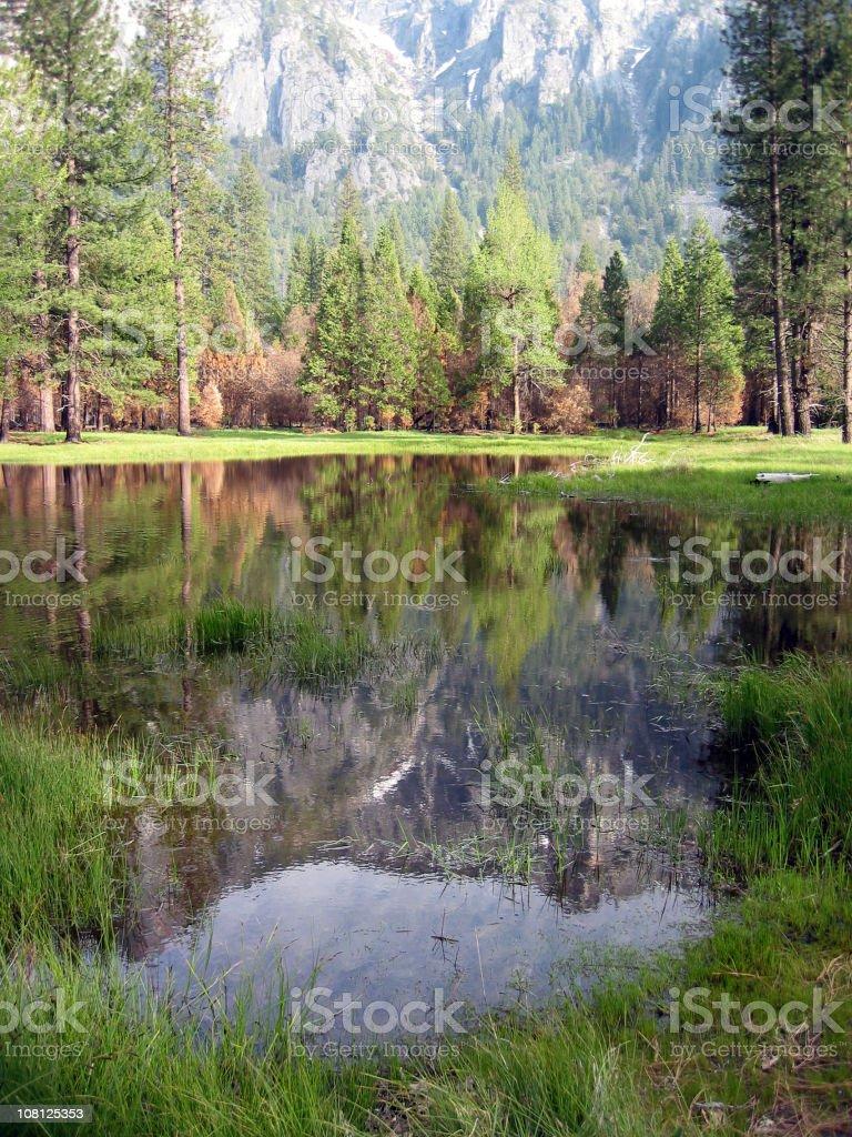 Yosemite pond royalty-free stock photo