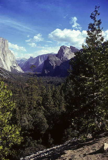 Yosemite Valley, circa 1978 A bright sunny wide shot of the entire Yosemite Valley, with El Capitan, the Three Sisters, and Halfdome in the distance. Taken from the tunnel entrance to the Valley. hearkencreative stock pictures, royalty-free photos & images