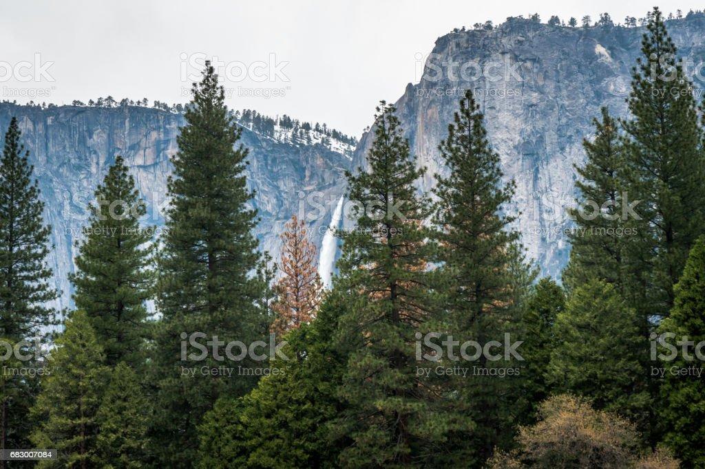 Yosemite Valley foto de stock royalty-free