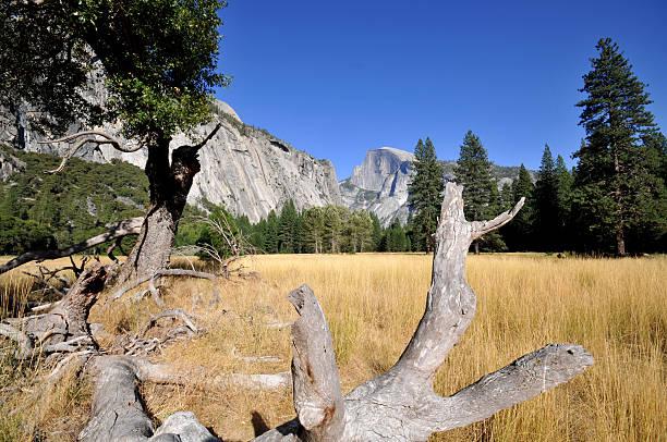 yosemite valley - patrick hutter stock-fotos und bilder