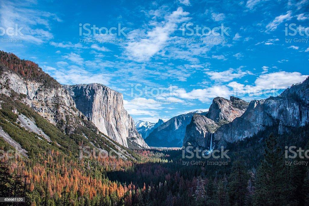 Yosemite's Valley stock photo