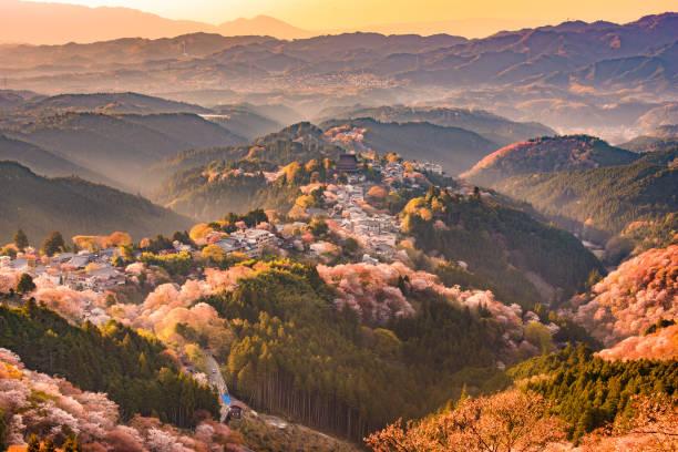 yoshinoyama, japan in spring - japan stock photos and pictures