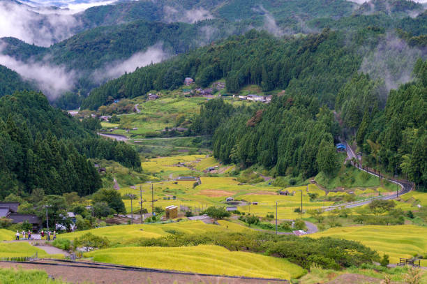 Yotsuya No Semmaida village and rice fields Yotsuya No Semmaida village and rice fields, view from above. Rice paddy terraces among mountain forest. Shinshiro, Aichi prefecture, Japan satoyama scenery stock pictures, royalty-free photos & images