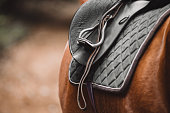 Cropped shot of a saddle on a horse's back