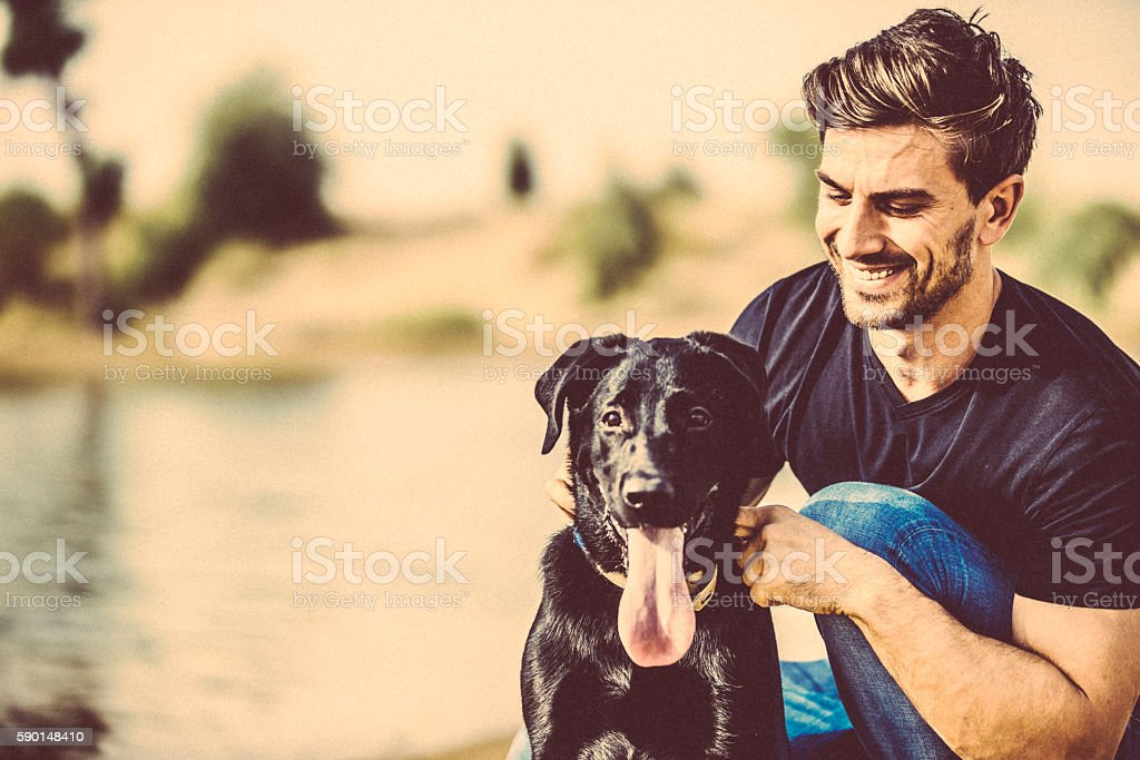 You are such an adorable and obedient pet. stock photo