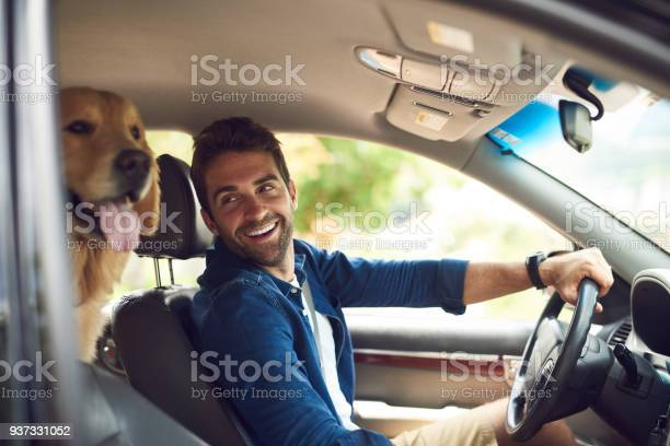 You comfy back there picture id937331052?b=1&k=6&m=937331052&s=612x612&h= dygkamtag3kqczpupgdyia0tfiijc7cm4yso ummos=