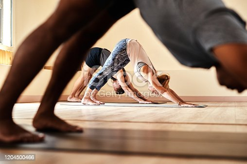 Shot of a group of young men and women practicing the downward facing dog pose during a yoga session