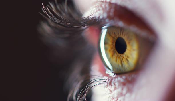 你總會在一個人的眼中找到真相 - 特寫 個照片及圖片檔