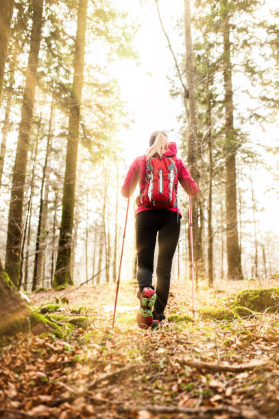 Young Active Woman Explore The Forest During Her Trekking Young Active Woman Explore The Forest During Her Trekking nordic walking stock pictures, royalty-free photos & images