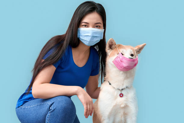 Young adult asian woman and her dog wearing in protective face mask stock photo