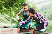 Young adult couple doing gardening together