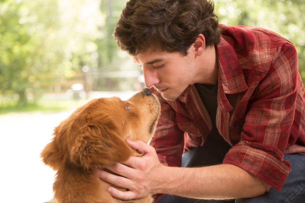 Young adult male with his pet golden mix dog. Young adult man in red plaid shirt enjoys the company of his pet golden mix dog.  They muzzle in a show of affection. covid-19 stock pictures, royalty-free photos & images