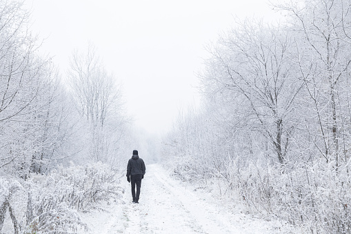 Young adult man alone slowly walking after snowfall. Peaceful atmosphere in amazing awesome winter day. Enjoying fresh air in snowy forest trail. Back view.