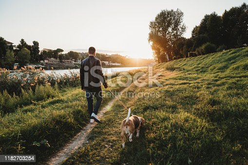 Young adult man walking with his dog near a river in the city