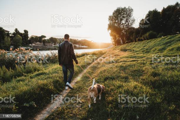 Young adult man walking with his dog near a river in the city picture id1182703254?b=1&k=6&m=1182703254&s=612x612&h=mmlp0knccim7fdv8zvl2b9 4qqhe gliiihrsvpbnpq=