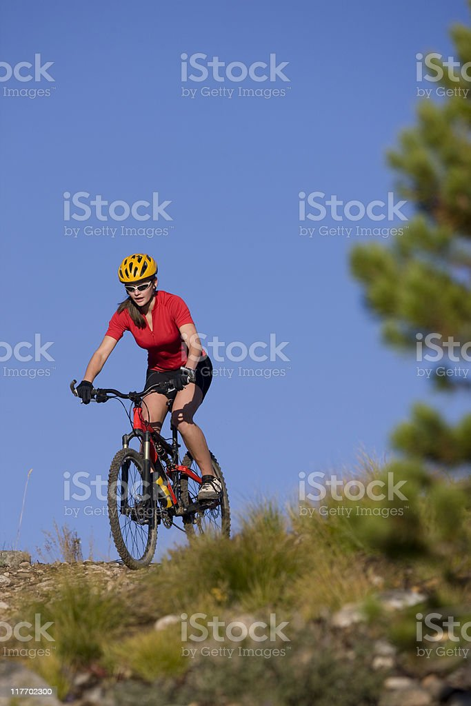 Young Adult Riding Mountain Bike royalty-free stock photo