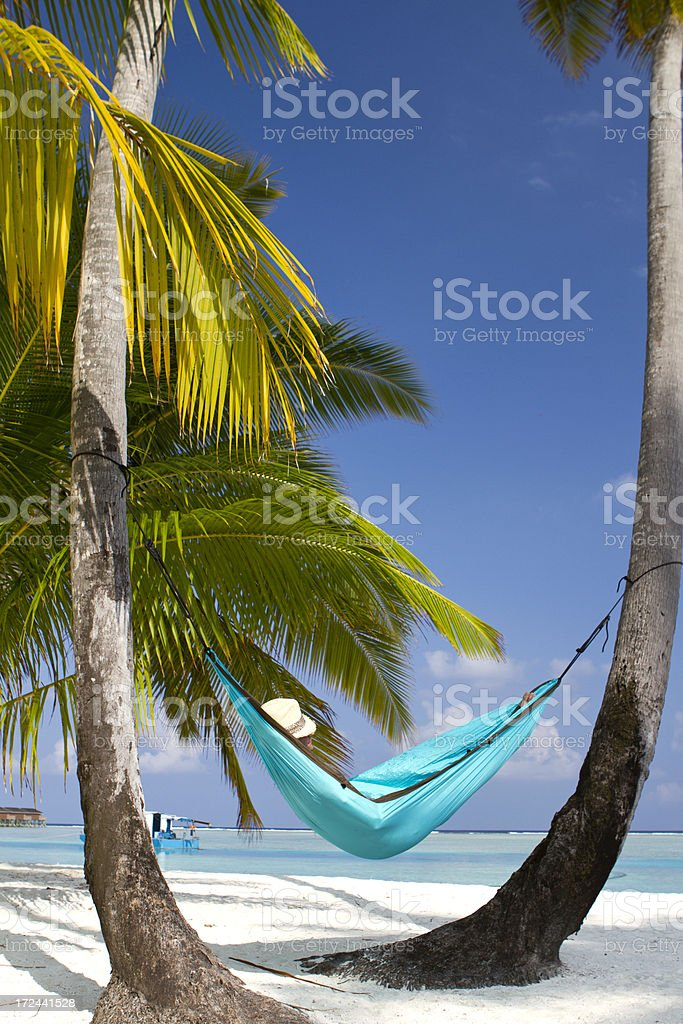 Young adult sleeping in a hammock on the beach royalty-free stock photo