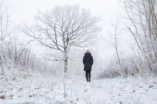 Young adult woman alone slowly walking after snowfall. Peaceful atmosphere in amazing awesome winter day. Enjoying fresh air in park. Back view. Low angle.