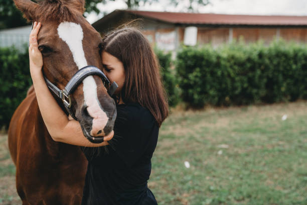 Young adult woman embracing her horse at the riding school stock photo