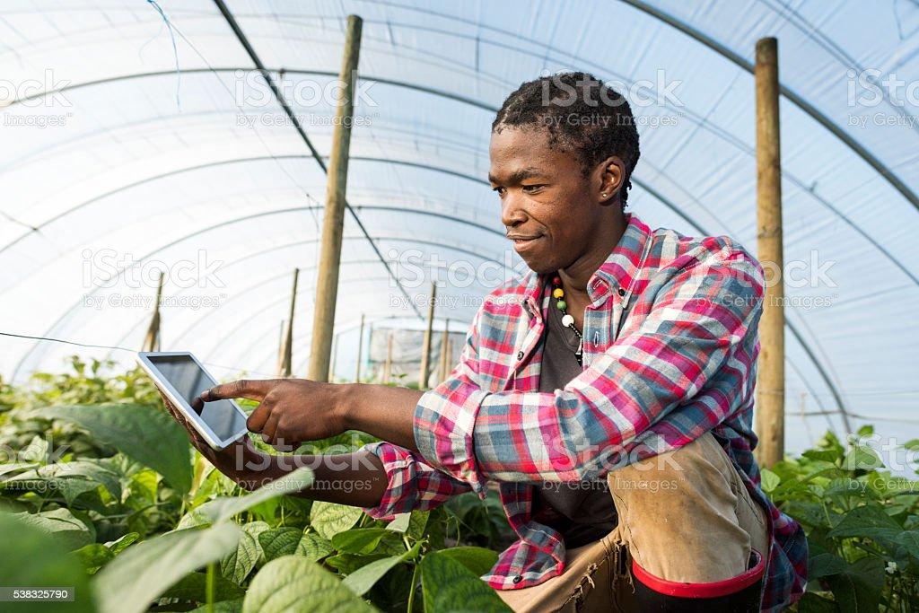 Jeune homme africain à genoux et pointant sur tablette - Photo