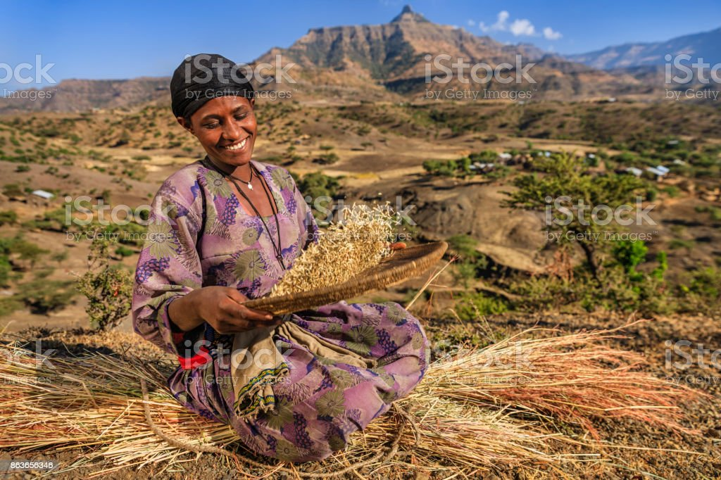 Young African woman is sifting the sorghum, East Africa stock photo