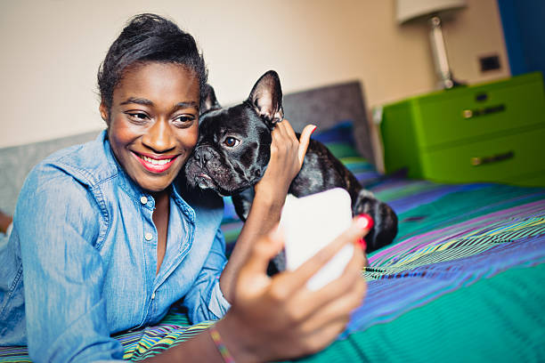 Young African Woman taking selfie with French bulldog stock photo