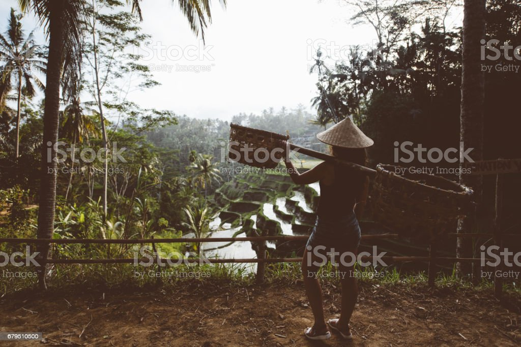 Young agriculture woman carrying tools on rice terraces in Ubud Village, Bali, Indonesia. Rice terraces during golden light. Silhouette of woman on vintage edit stock photo
