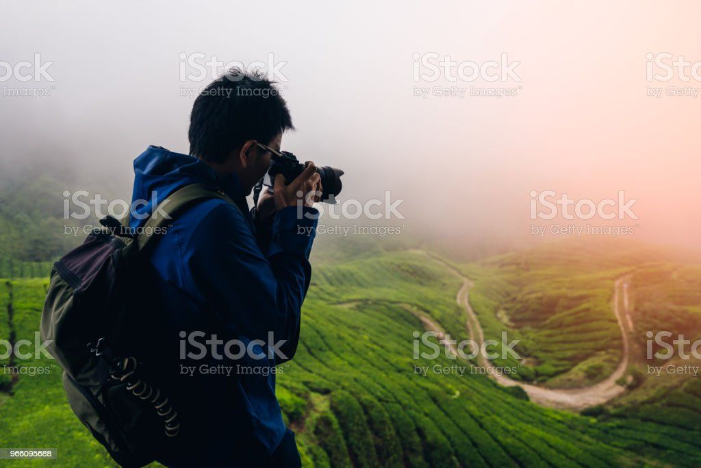 Young asian backpacker traveling into tea fields with mist. Young man traveler take a photo of mountain tea field with foggy, Enjoying tea plantations in Cameron Highlands near Kuala lumpur Malaysia - Royalty-free Adult Stock Photo