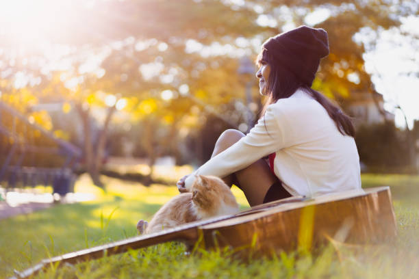 Young asian girl sitting in the park stock photo