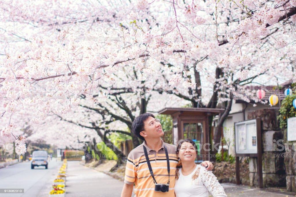 Cherry Blossom dating in Asia datazione significato in Tamil